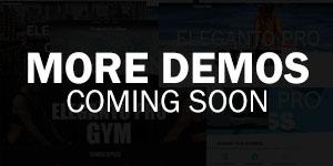 Giga Stores PRO demos